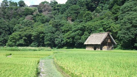 sirakawagou33.jpg