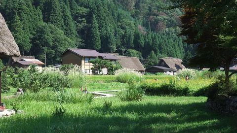 sirakawagou35.jpg
