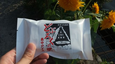 sirakawagou80.jpg