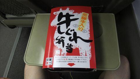 sirakawagou99.jpg