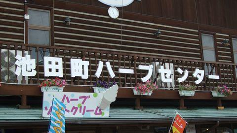 onegai46.jpg